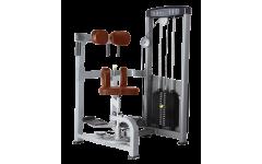 Торс-машина Bronze Gym D-011 (Коричневый)